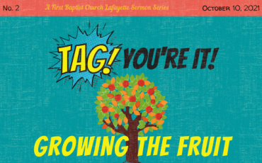 Tag! You're It! – Growing the Fruit